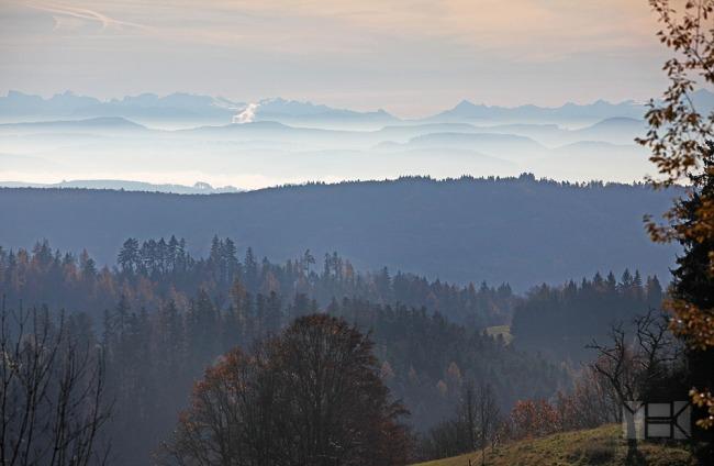 Blick auf die Schweizer Alpen in der Ferne