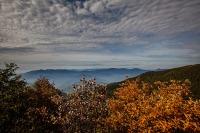 Tolle Wolken und farbige Blätter