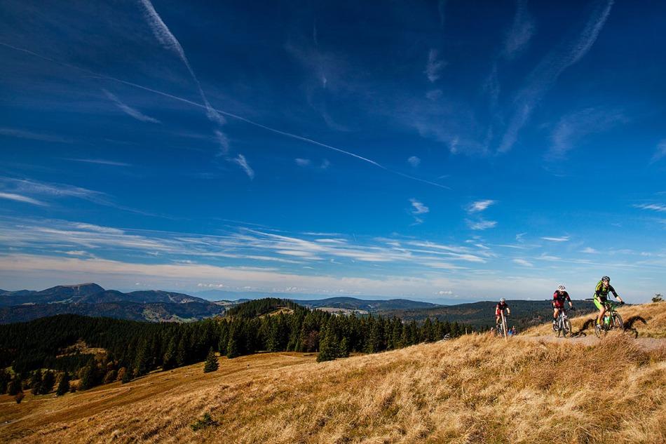 Die letzten Meter bis zum Gipfel des Herzogenhorn mit toller Aussicht