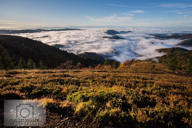 Trailrunning und Sonnenaufgang am Belchen / Schwarzwald